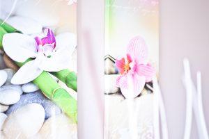 Leinwände mit Orchideen